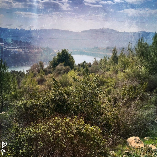 barukh-jeruzsalemi-hegyek-izraeli-taj-7
