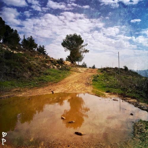 barukh-jeruzsalemi-hegyek-izraeli-taj-9