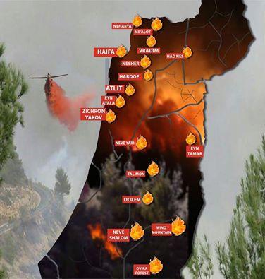 A Stand with us ábrája a tüzekről