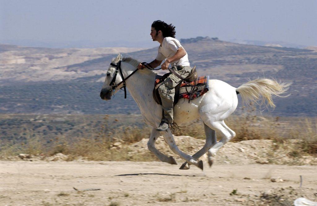 A Nablushoz közeli, azóta kiürített Gilad Farm egyik lakosa vágtat a lován, 2003 - fotó: Ohayon Avi / GPO