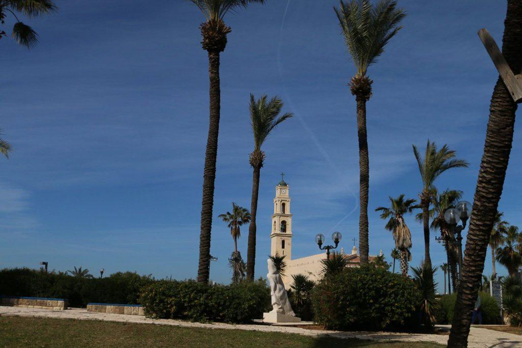Tel-Aviv palmafak templom jafo Keller Zoltan