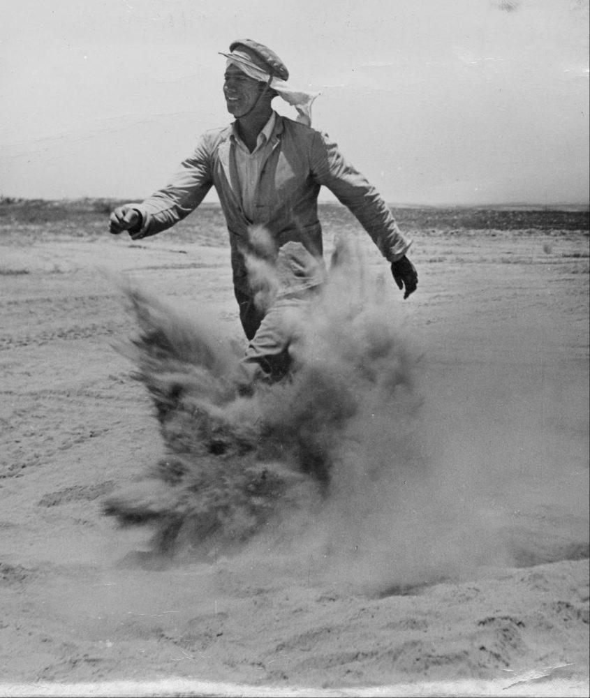 uj ole uj bevandorlo 1950 sivatag