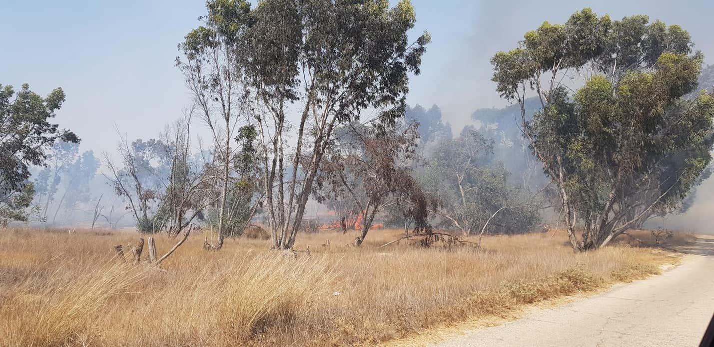 Három tűz ütött ki gyújtóléggömbök következtében